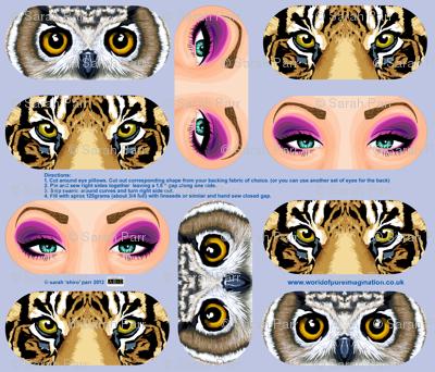 Eye-Eye Pillows