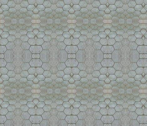 Rrrrrimg_2096_shop_preview