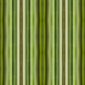 Green Bamboo Symmetry