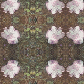 Fungi Floral