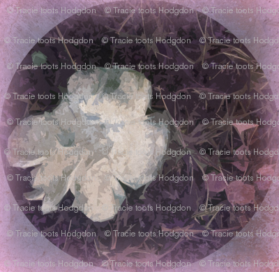 Distressed Fungi Floral Purple Sq