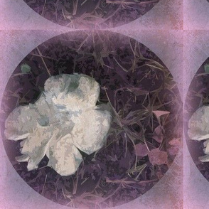Distressed Fungi Floral Purple Sq