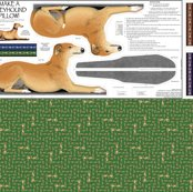 Rrred-male-greyhound_shop_thumb