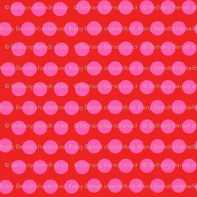 Zig Zag Pet Party Dots 2