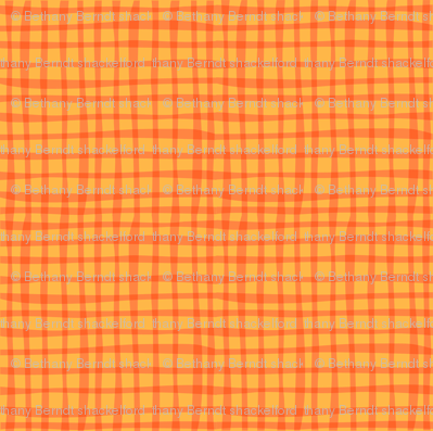 Zig Zag Pet Party orange gingham