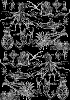 Antique Horrors of the Deep (Inverted)