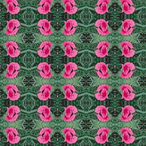 poppy_pink