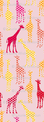 UC2_Giraffes_orangeRev