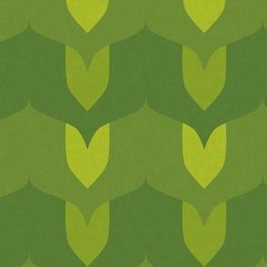 Leaves - summer