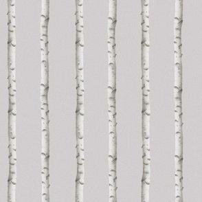 Norwegian birch