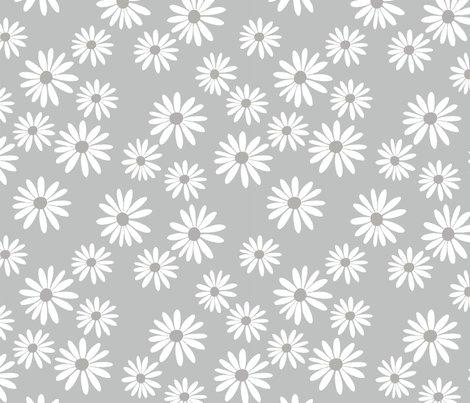 Rchocolate_daisy_mist_shop_preview