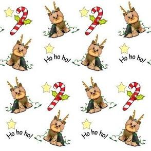 Yorkie Christmas S