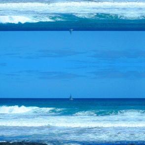 Southern Ocean 2009