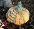 Rpatchwork_pumpkin_comment_205340_thumb