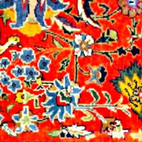 Oriental Red big