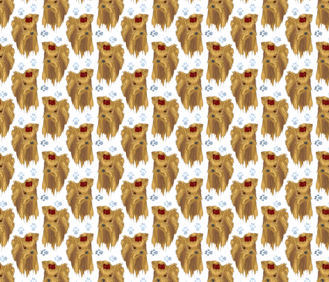 Yorkie faces and paws fabric by rusticcorgi on Spoonflower - custom fabric