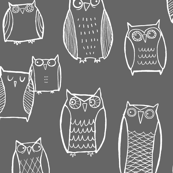 (Little) Night Owl Gray/White