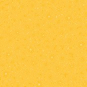 Stars-on-stripes-goldwhite-blank_shop_thumb