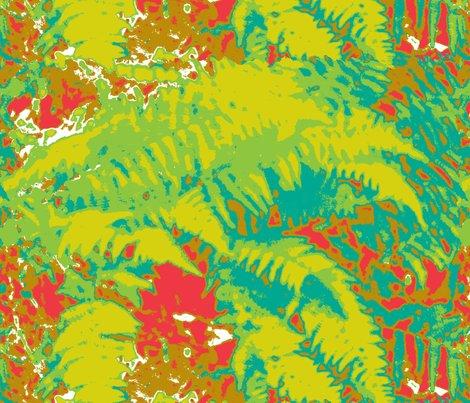 B_425213_ferns_oct_8_2009_007_shop_preview