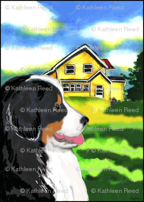 Bernese Mountain Dog and Yellow House
