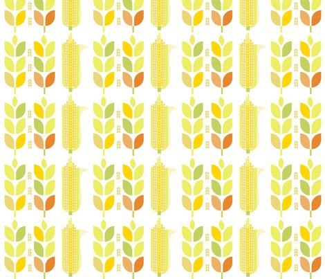 Rmod-autumn862x600_shop_preview