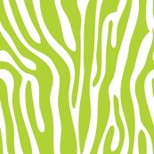 Rrgirls-rock-green-zebra_shop_thumb