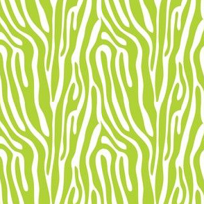 girls rock green zebra stripes
