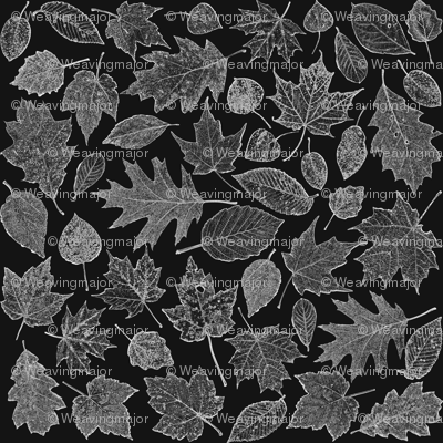 small leaf etchings - film negative