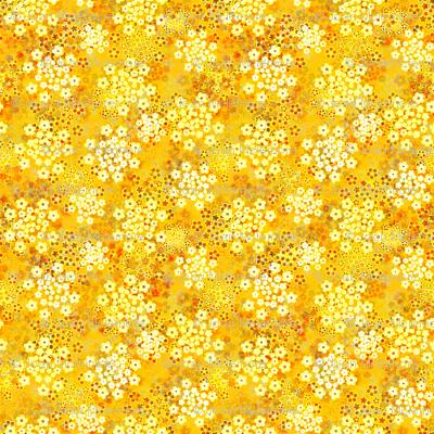 Verbena yellow
