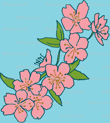 pink blossom/blue sky