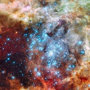 Nasa Hubble 30-doradus