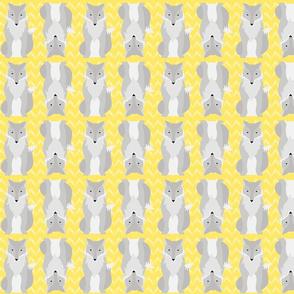 Grey Fox on Yellow Chevron