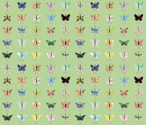 Rsmall_butterfly_green_shop_preview