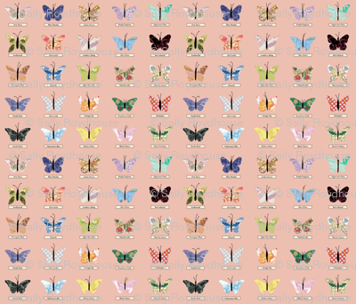 small_butterfly_peach