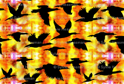 Birds flying home at Sunset by Sylvie