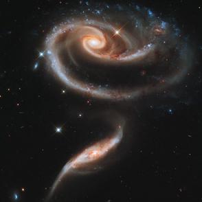 NASA Hubble - Galaxy Rose