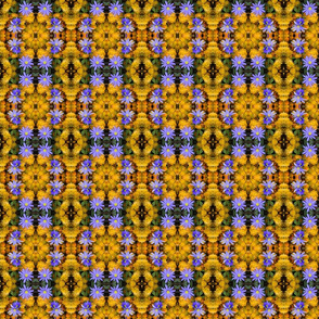 """Purple and Yellow """"Daisy"""" Chains_6669"""