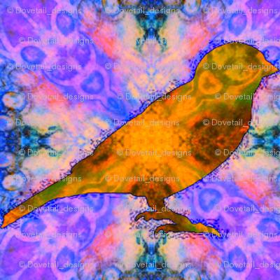Bird Songs 10
