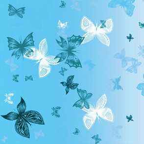 Sky Blue Butterflies