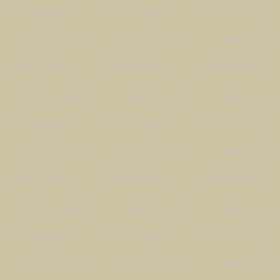 Beady Eyed Bird (beige coordinate)