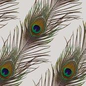 1396844_r1396844_rpeacock_stripe_grey_f_shop_thumb