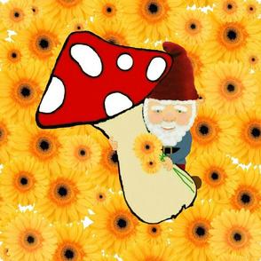 A happy gnome / kaczbo
