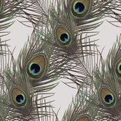 Rrpeacock_layers_crossed_grey-001_shop_thumb