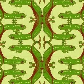 Green Salamander Letter C