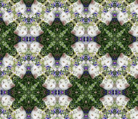 zac_fr_kal3 fabric by kalonasimmons on Spoonflower - custom fabric