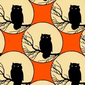 Owl In Orange