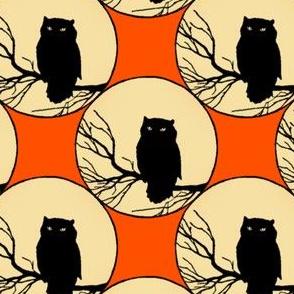 Owl In Orange