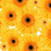 Rrrrrrra_happy_gnome_sunflowers_shop_thumb