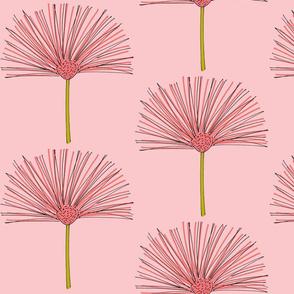 pink pouf-pinky