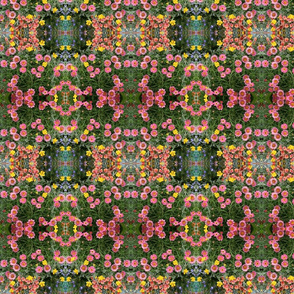 Multicolored Pink Floral_8785